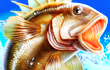 Sport Fishing Game